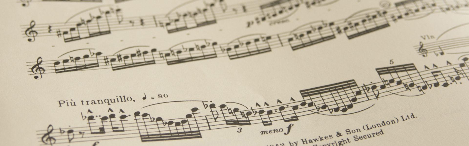 Muziek als Vak